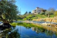 Palestine Museum of Natural Hi